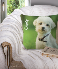WW-PETP00001 Personalized Custom Pet Photo Pillow Keepsake/Memorial by Personalize it FREE